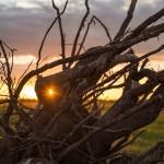 Каждый трудоголик должен отдыхать на лоне природы в Беларуси
