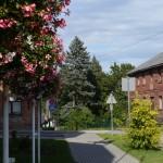 Виесите — город в области Селия, Латвия