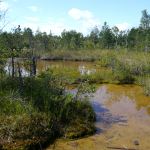 Серные озера в Национальном парке Кемери.