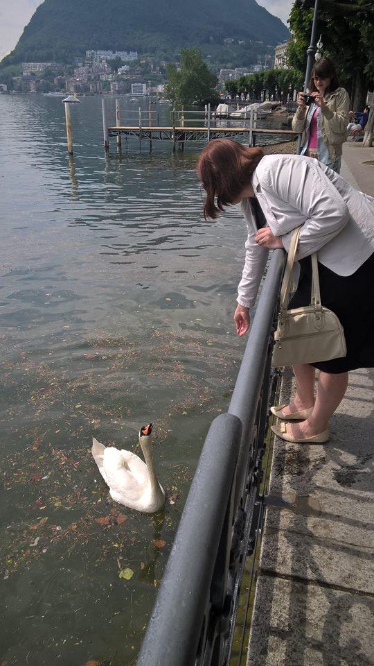 Lugano 3_lebedj