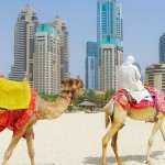 Turkish Airlines : из Вильнюса в Дубай всего за 257 евро!