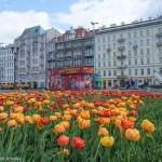 Знакомство с Польшей или что посмотреть Варшаве за два дня?