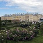 Сад роз в Рундале