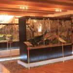 Яундомское поместье: все о рыбах и озёрах