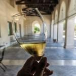 Vīna darīšana un degustācijas Markes reģionā Itālijā