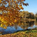 ТОП 5 мест для осенних прогулок в Латвии